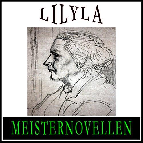 Meisternovellen 13 audiobook cover art