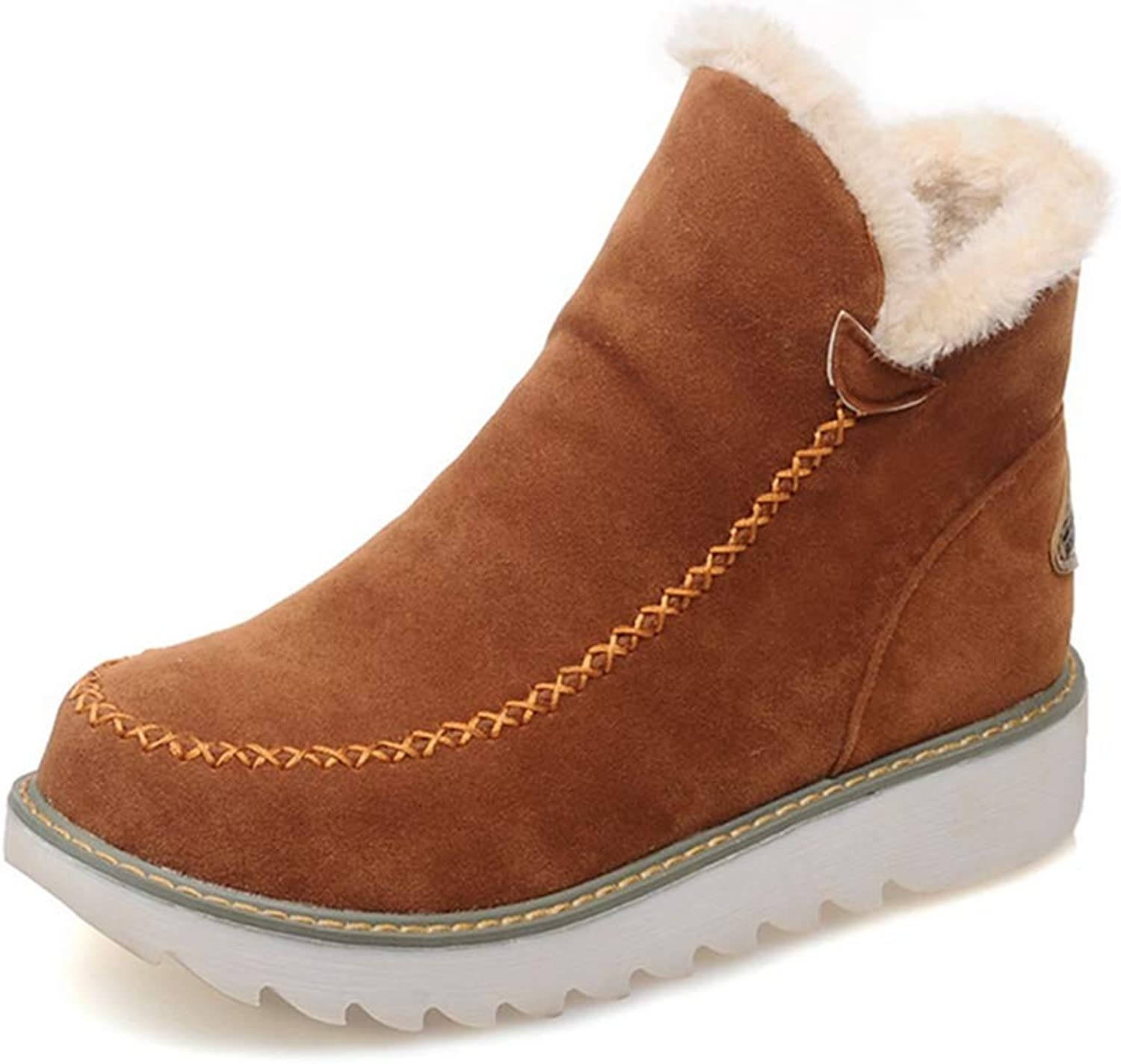 Snow Boots Autumn Winter Classic Flats Women Winter Boots Warm Fur Plush Insole Ankle Boots Woman shoes