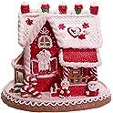 Kurt S. Adler 9 Inch Santa and Mrs. Claus Gingerbread House