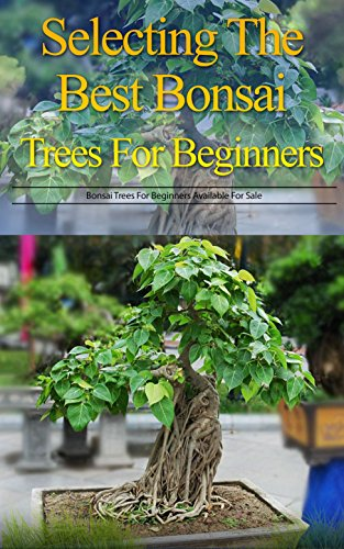 Selecting The Best Bonsai Trees For Beginners Bonsai Trees For Beginners Available For Sale Kindle Edition By Hodge Kathryn Crafts Hobbies Home Kindle Ebooks Amazon Com