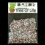 dgdfg Crassula ovata fertilizante Baum des Lebens Jade planta, Árbol de la Vida, planta de la suerte suficiente para 20 litros