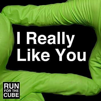 I Really Like You (No Autotune)