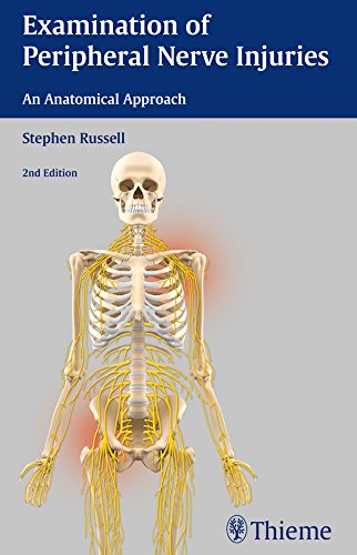 Examination of Peripheral Nerve Injuries: An Anatomical Approach (English Edition)