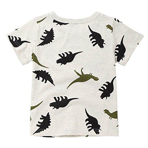 Sunenjoy Bébé Garçon T-Shirt à Manches Courtes Dinosaure Imprimé Été (4 Ans, Gris)