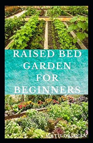 RAISED BED GARDEN FOR BEGINNERS: Step by steps guides on how to start Raised bed garden for starters