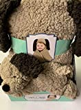 Little Miracles Animal Hugs Collection - Hooded Blanket with Plush, 2 Piece Set (Puppy)