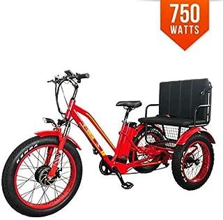 Bpmimports BPM R-750W 48V 21AH RED Rickshaw Fat TIRE Electric Bike Bicycle Trike