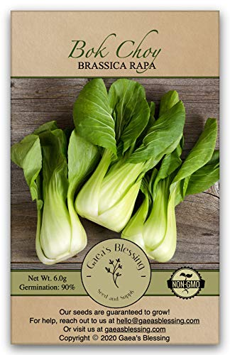 Gaea's Blessing Seeds - Bok Choy Seeds (1000 Seeds) Canton Pak Choi Chinese Cabbage Non-GMO Heirloom 90% Germination Rate Net Wt. 6.0g