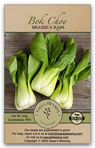 盖亚的祝福种子 - 白菜种子(1000个种子)广州青菜中国大白菜非转基因传家宝90%的发芽率净重。6.0克