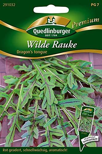 Quedlinburger 291032 Wilde Rauke Dragon's tongue (Salatsamen)