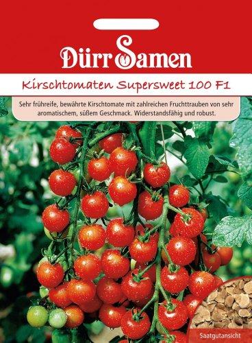 Kirschtomaten Supersweet 100 F1