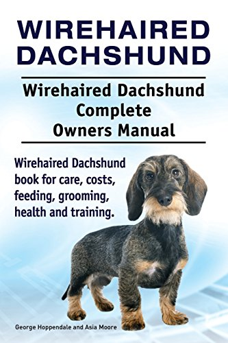 Wirehaired Dachshund. Wirehaired Dachshund Complete Owners Manual. Wirehaired Dachshund book for care, costs, feeding, grooming, health and training.