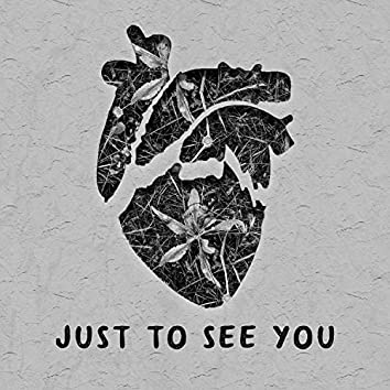 Just to See You