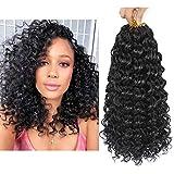 Dansama 6 Packs 14inch GoGo Curl Crochet Braids Water Wave Crochet Synthetic Hair Extensions (14 inch, 1B#)