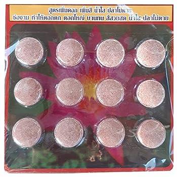 Best water lily fertilizer tablets Reviews