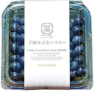 冷凍ブルーベリー100g×5P 堀内果実園 無農薬栽培 安心 安全