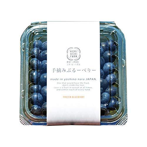 冷凍ブルーベリー100g×30P 堀内果実園 無農薬栽培 安心 安全