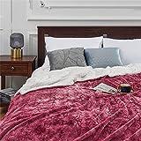 ankets para BeDoue Layer Thicken Plush Home Warmer Ropa de Cama ankets Cordero Cashmere Sofá Grueso ankets Fleece Bedspread-Red, 130x150cm, China