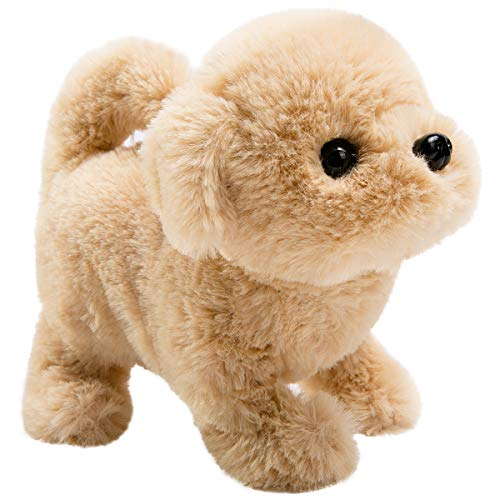 Toy Dogs That Walk