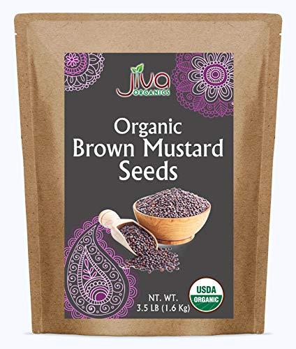 吉瓦有机棕芥菜种子3.5磅-非转基因生酮友好