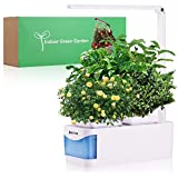 Hoctor Indoor Herb Garden w/LED Grow Light | Hydroponics Growing System for Plants, Flowers, Fruits, Vegetables, Succulents | Hands-Free Home Kitchen Gardening