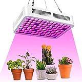 LED Cultivo Interior,Roleadro Plantas Led Grow Light Lámpara de Plantas Espectro Completo Ligero Lampara de Cultivo para Jardín de Interior Greenhouse Hydroponics
