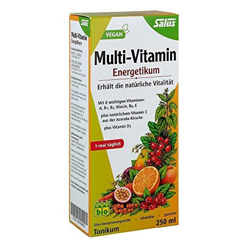 Salus Multi-Vitamin Energetikum – Tonikum zum Erhalt der natürlichen Vitalität – mit 8 wichtigen Vitaminen – vegan – 250 ml