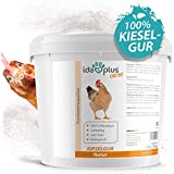 Ida Plus – Kieselgur Natur 12 Liter im Eimer – Biologische Kieselerde als Pulver – das Bio Produkt für ihren Hühnerstall & Garten – gut für Hühner, Wachteln & anderes Geflügel – inkl. Puderflasche