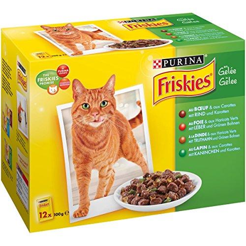 Friskies aux Viandes & Légumes en Gelée - 12 x 100g - Lot de 6 (72 Sachets Fraîcheur pour Chat Adulte)