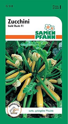 Samen Pfann G518 Zucchini Gold Rush F1 (Zucchinisamen)