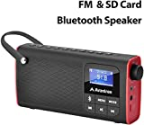 Avantree Portable Bluetooth Speaker with FM Radio, SD Card, Auto Scan and Save