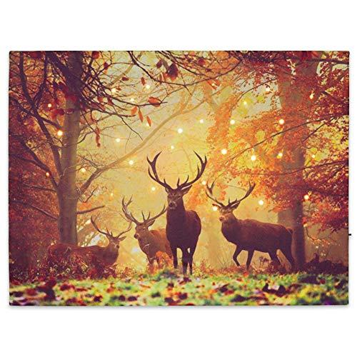 Nexos LED Wandbild Leinwandbild mit Beleuchtung Fotodruck Hirsch 30x40 cm Kunstdruck Leuchtbild Effekt-LED Herbst-Dekoration Hirschrudel Mischwald Jäger Heimat