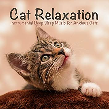 Cat Relaxation: Instrumental Deep Sleep Music for Anxious Cats