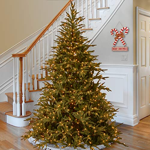 Feel Real Pre-lit Artificial Christmas Tree | Includes Pre-strung Dual-Color LED Lights and Stand | Frasier Grande - 9 ft