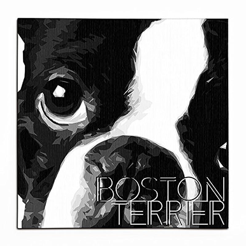 トラクターフレキシブル知るHAPPY PET ワンにゃんアートキャンバス 【IMPACT -shirokuro-】ボストンテリア (S)