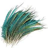 Mwoot 30pcs Natural Pavo Real Plumas de espada, Plumas de Pavo Real para la decoración del hogar DIY Jewelry Party Arte (25-35CM)