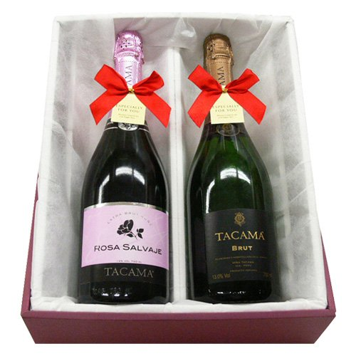 南米紅白ワインギフトセット ロサ・サルバヘ&ブリュット タカマ(TACAMA)