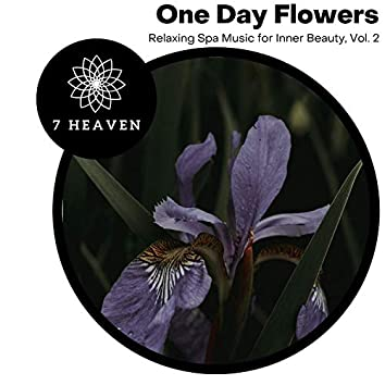 One Day Flowers - Relaxing Spa Music For Inner Beauty, Vol. 2