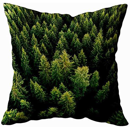July kussensloop Afdekking Luchtopname Zomer groene bomen op het platteland Fotografie Finland drone binnen en buiten