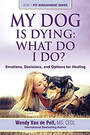 My Dog Is Dying, What Do I Do?