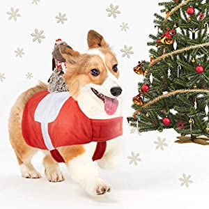 Hozz Dog Shirts Small Pet Apparel