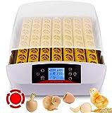 Incubadoras 56 huevos completamente automáticos Incubadora inteligente Incubadora Criadores de Pollos con pantalla LED de temperatura y control de humedad