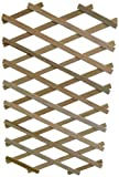 Apollo Gardening Ltd Treillis en bois extensible avec support pour plantes flexible