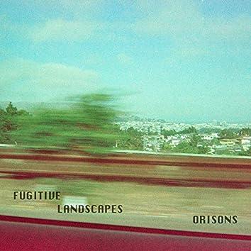 Fugitive Landscapes