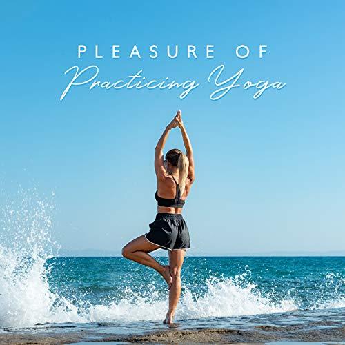 Pleasure of Practicing Yoga: Body Bolster, Yoga Meditation, Mindfulness Practice