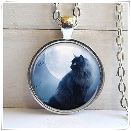 Colgante de gato negro no ver largo, collar de gato, joyas para gatos, plata y cristal encanto...