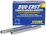 Duo-Fast 5010C - 5/16-Inch x 20 Gauge Chisel Staples