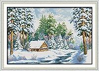 クロスステッチ刺繍キット 図柄印刷 初心者 ホームの装飾 刺繍糸 針 布 11CT Cross Stitch ホームの装飾 雪の世界の風景 40x50cm
