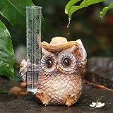 Aivanart Owl Rain Gauge Outdoor Garden Decor, Decorative Sculptures Statues for Yard Patio...