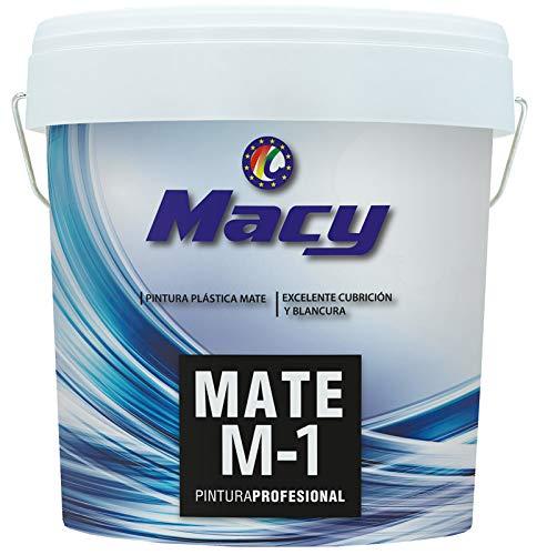 Pintura Plástica Mate M-1 Antimoho para Interior y Exterior con Conservante Antimoho. 14 Litros. Color Blanco